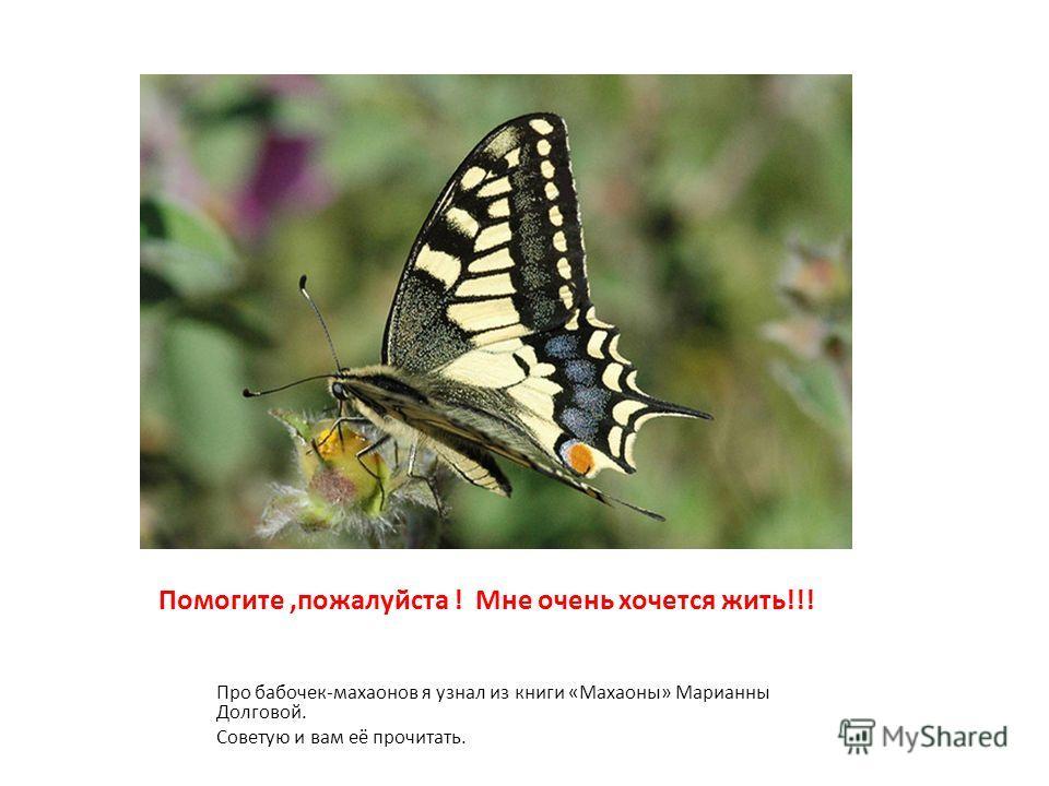 Помогите,пожалуйста ! Мне очень хочется жить!!! Про бабочек-махаонов я узнал из книги «Махаоны» Марианны Долговой. Советую и вам её прочитать.