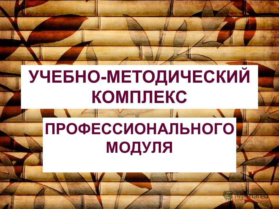 УЧЕБНО-МЕТОДИЧЕСКИЙ КОМПЛЕКС ПРОФЕССИОНАЛЬНОГО МОДУЛЯ