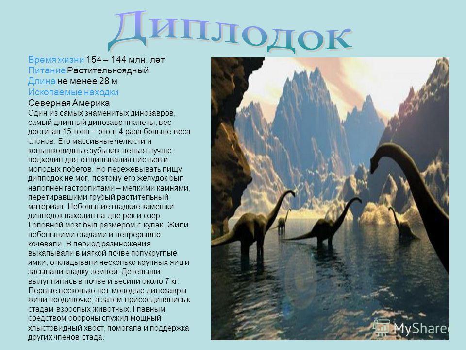 Время жизни 154 – 144 млн. лет Питание Растительноядный Длина не менее 28 м Ископаемые находки Северная Америка Один из самых знаменитых динозавров, самый длинный динозавр планеты, вес достигал 15 тонн – это в 4 раза больше веса слонов. Его массивные