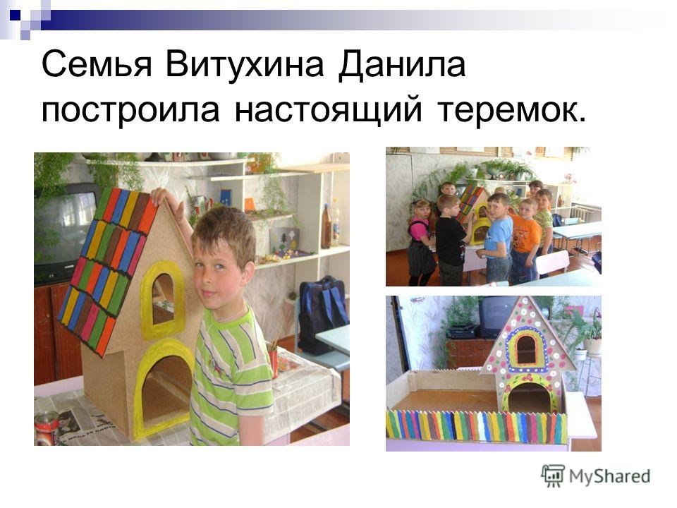 Семья Витухина Данила построила настоящий теремок.