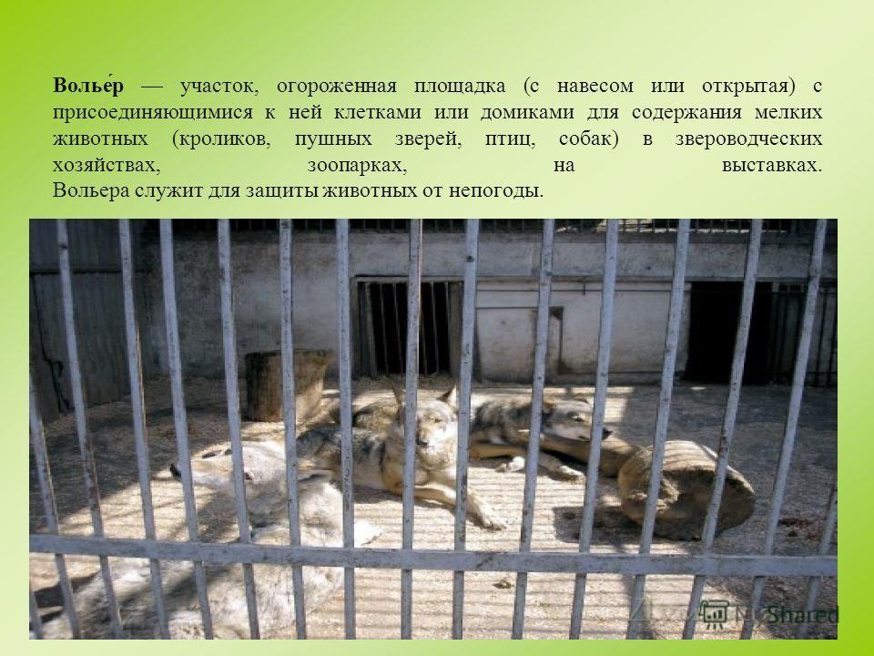 В целях сохранения животных и во избежание несчастных случаев посетителям зоопарка категорически воспрещается : кормить животных; заходить в зоны обслуживания и строительства; перелезать через ограждения; ставить детей на барьеры; входить на территор