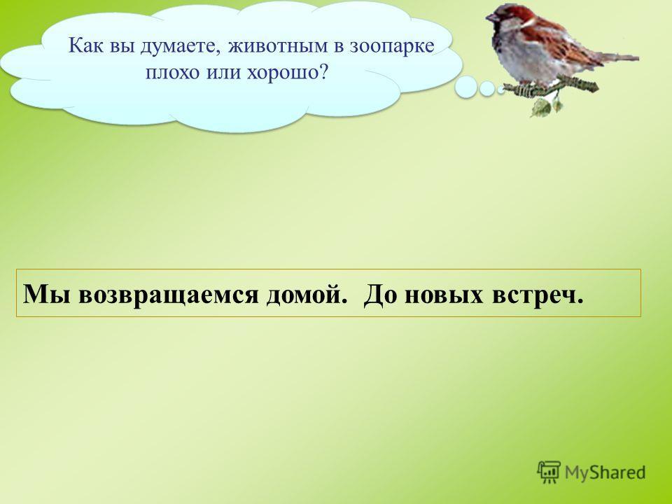 Челябинский зоопарк зоологический парк расположенный в центральном районе Челябинска На площади в 30 гектаров обитают более 110 видов животных, из которых более 80 внесены в красную книгу. Зоопарк участвует в международных программах по сохранению ис
