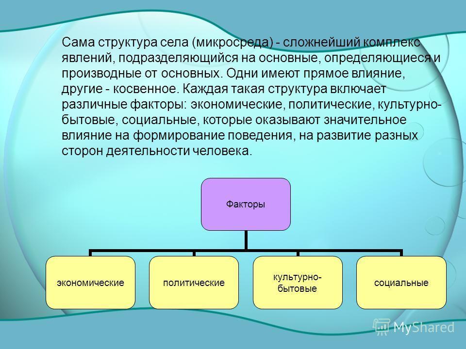 Сама структура села (микросреда) - сложнейший комплекс явлений, подразделяющийся на основные, определяющиеся и производные от основных. Одни имеют прямое влияние, другие - косвенное. Каждая такая структура включает различные факторы: экономические, п