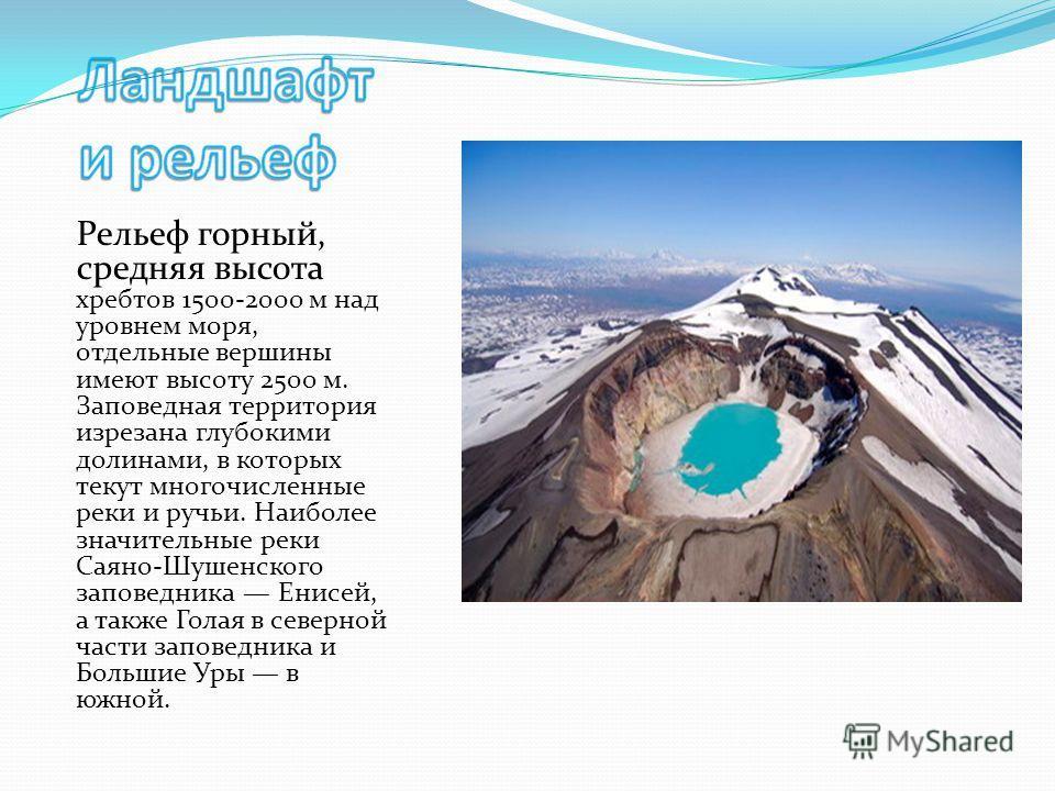 Рельеф горный, средняя высота хребтов 1500-2000 м над уровнем моря, отдельные вершины имеют высоту 2500 м. Заповедная территория изрезана глубокими долинами, в которых текут многочисленные реки и ручьи. Наиболее значительные реки Саяно-Шушенского зап
