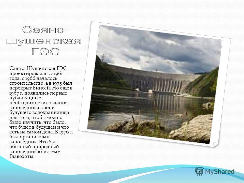 Саяно-Шушенская ГЭС проектировалась с 1961 года, c 1966 началось строительство, а в 1975 был перекрыт Енисей. Но еще в 1967 г. появились первые публикации о необходимости создания заповедника в зоне будущего водохранилища: для того, чтобы можно было