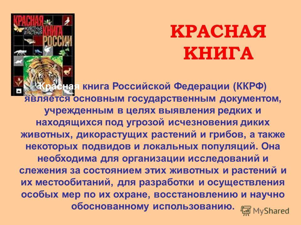 КРАСНАЯ КНИГА Красная книга Российской Федерации (ККРФ) является основным государственным документом, учрежденным в целях выявления редких и находящихся под угрозой исчезновения диких животных, дикорастущих растений и грибов, а также некоторых подвид