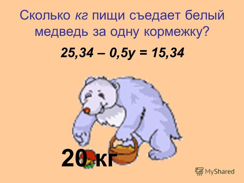Сколько кг пищи съедает белый медведь за одну кормежку? 25,34 – 0,5у = 15,34 20 кг