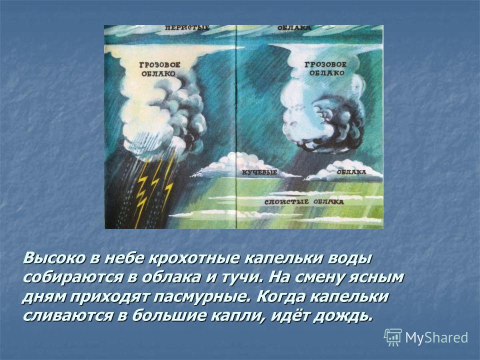 Высоко в небе крохотные капельки воды собираются в облака и тучи. На смену ясным дням приходят пасмурные. Когда капельки сливаются в большие капли, идёт дождь.