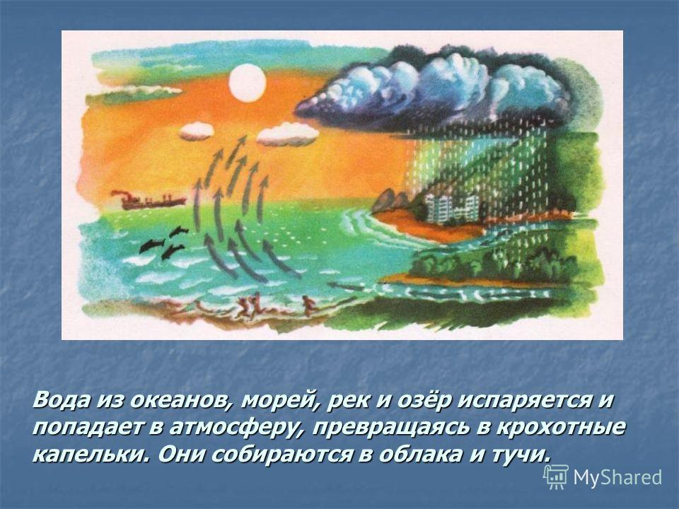 Вода из океанов, морей, рек и озёр испаряется и попадает в атмосферу, превращаясь в крохотные капельки. Они собираются в облака и тучи.