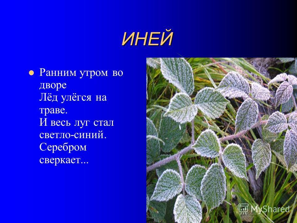 ИНЕЙ ИНЕЙ Ранним утром во дворе Лёд улёгся на траве. И весь луг стал светло-синий. Серебром сверкает...