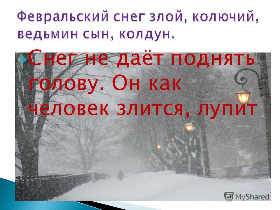 Снег не даёт поднять голову. Он как человек злится, лупит