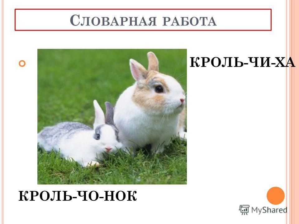 Кролик наш морковку грыз, А потом он спрыгнул вниз, Головою повертел, Порезвиться захотел. Он побегал, он попрыгал, Снова сел и запыхтел, А потом он сел за парту И свою морковку съел. ФИЗМИНУТКА