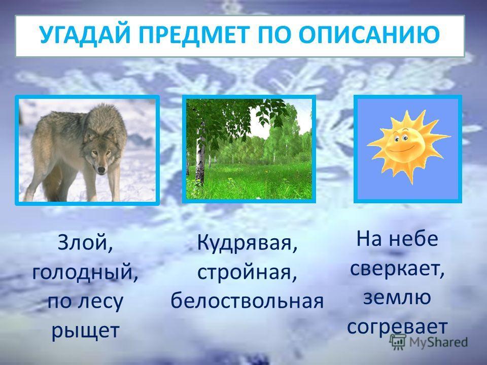 УГАДАЙ ПРЕДМЕТ ПО ОПИСАНИЮ Злой, голодный, по лесу рыщет Кудрявая, стройная, белоствольная На небе сверкает, землю согревает