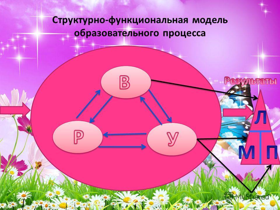 Структурно-функциональная модель образовательного процесса