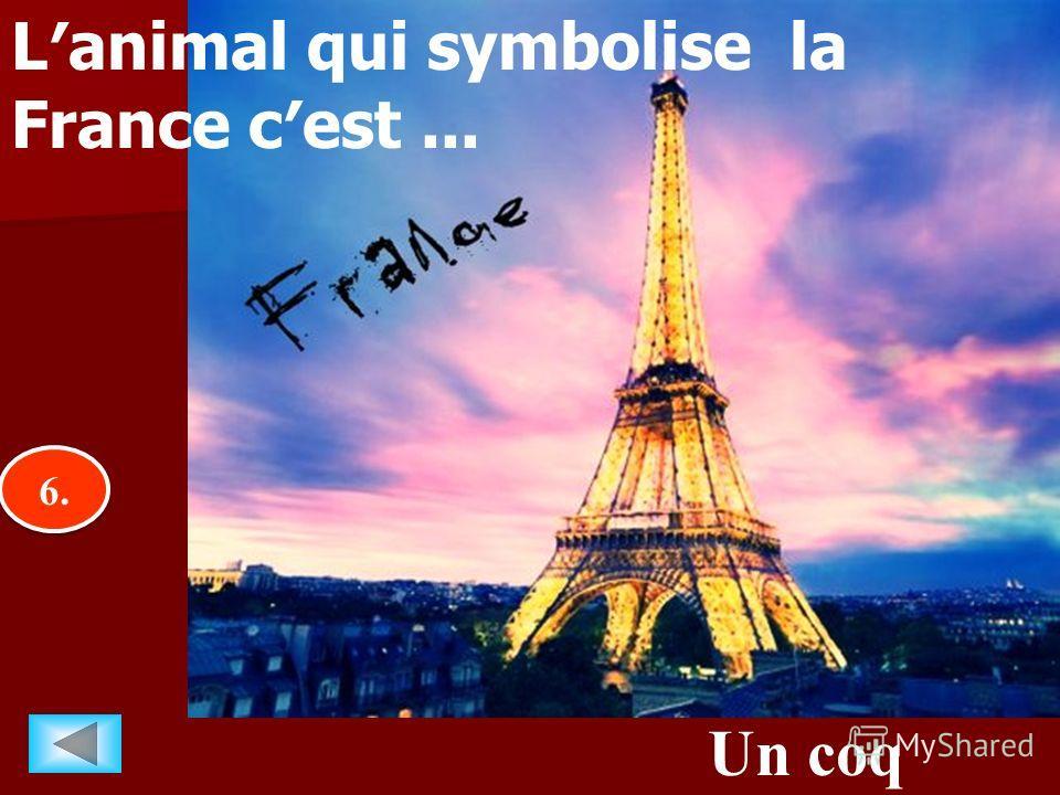 6.6. 6.6. Un coq Lanimal qui symbolise la France cest...