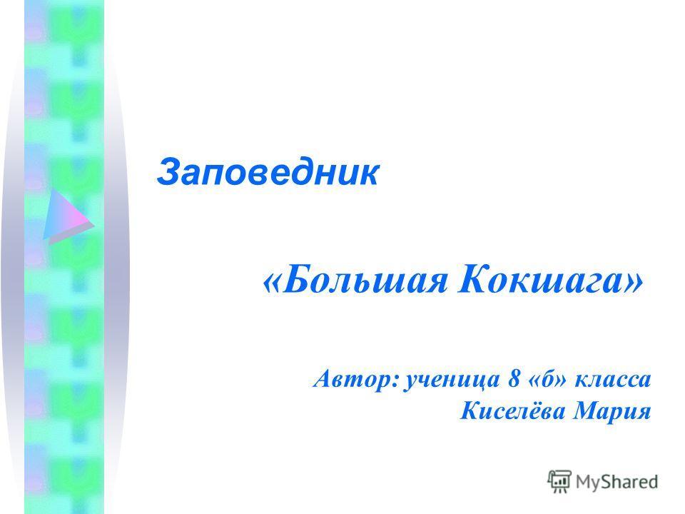 «Большая Кокшага» Заповедник Автор: ученица 8 «б» класса Киселёва Мария