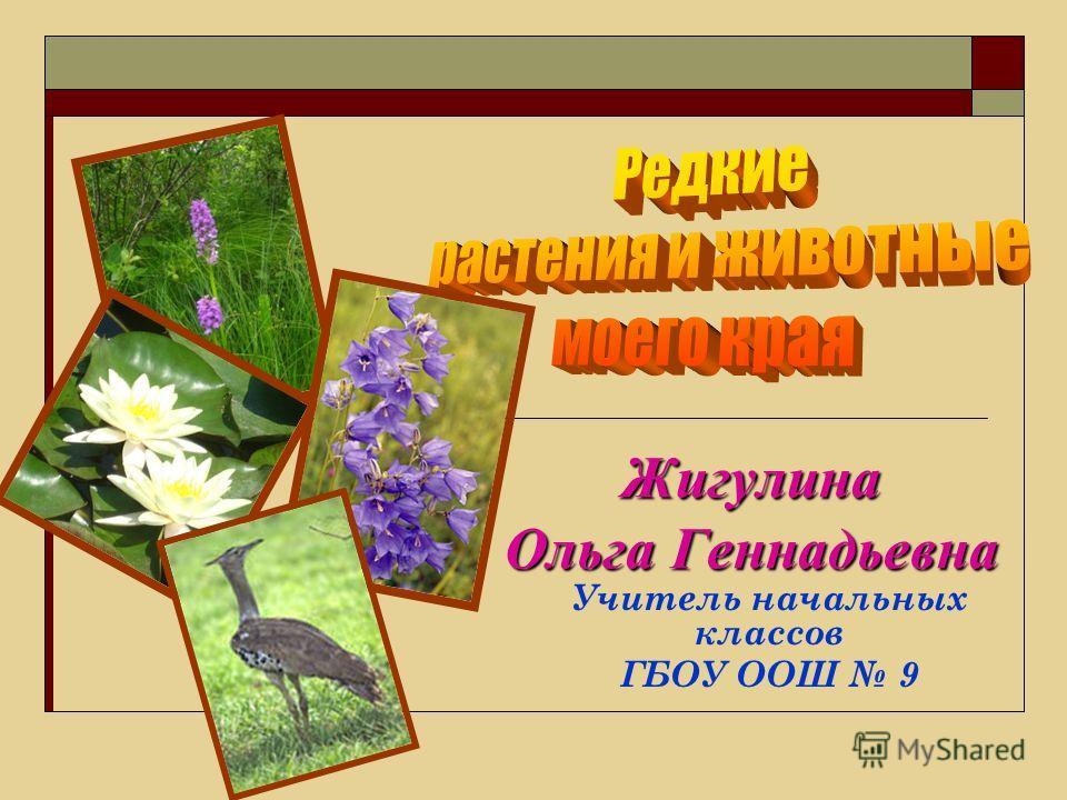 Растения Внесенные В Красную Книгу Самарской Области