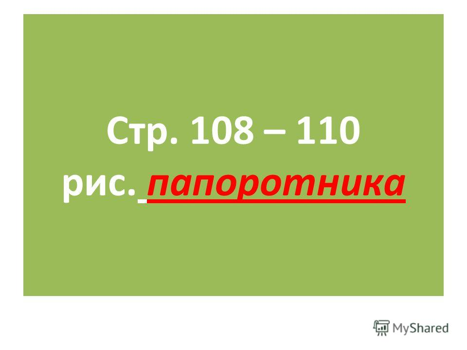 Стр. 108 – 110 рис. папоротника