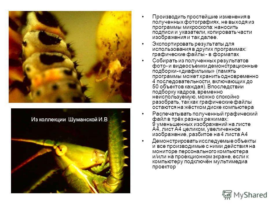 Производить простейшие изменения в полученных фотографиях, не выходя из программы микроскопа: наносить подписи и указатели, копировать части изображения и так далее. Экспортировать результаты для использования в других программах: графические файлы -