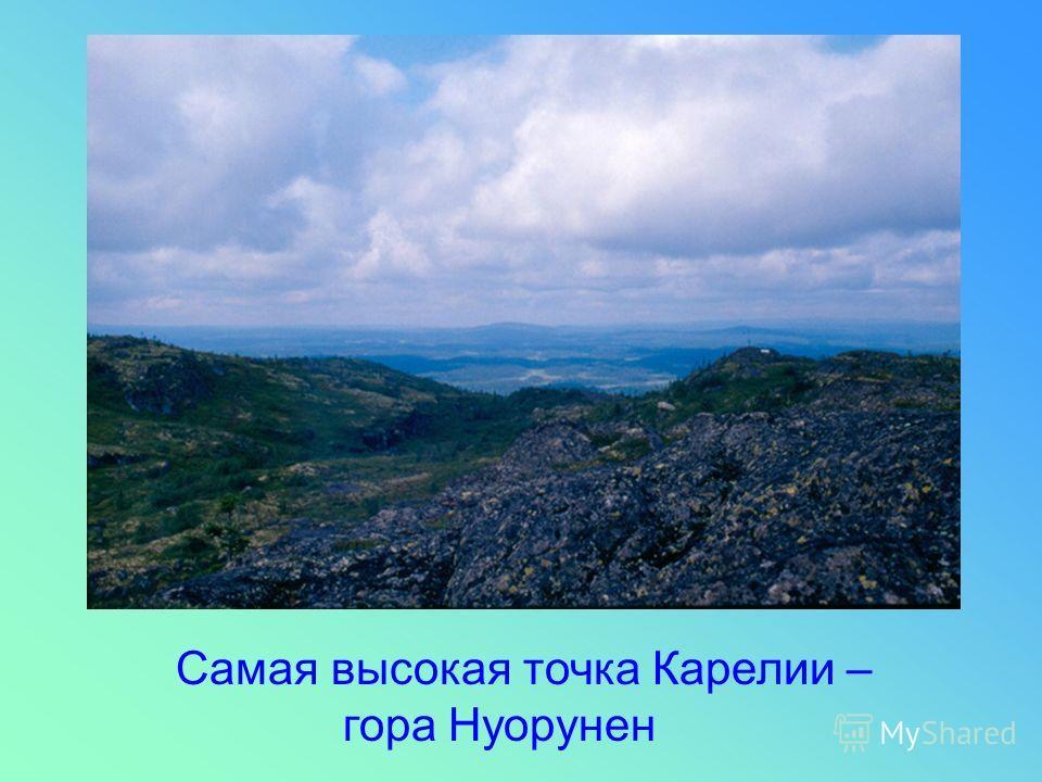 Самая высокая точка Карелии – гора Нуорунен