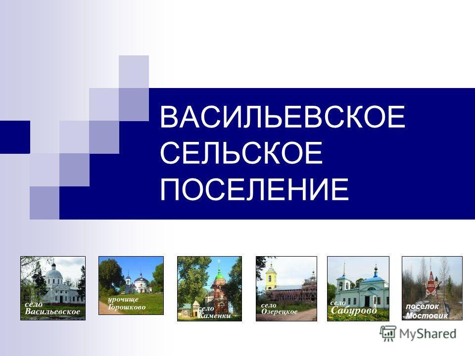 ВАСИЛЬЕВСКОЕ СЕЛЬСКОЕ ПОСЕЛЕНИЕ поселок Мостовик