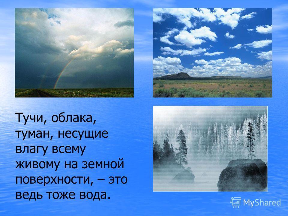 Тучи, облака, туман, несущие влагу всему живому на земной поверхности, – это ведь тоже вода.