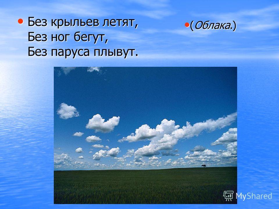 Без крыльев летят, Без ног бегут, Без паруса плывут. (Облака.) (Облака.)