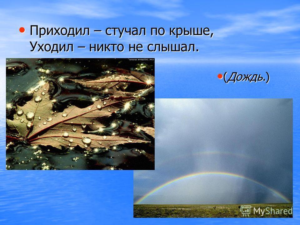 Приходил – стучал по крыше, Уходил – никто не слышал. (Дождь.) (Дождь.)