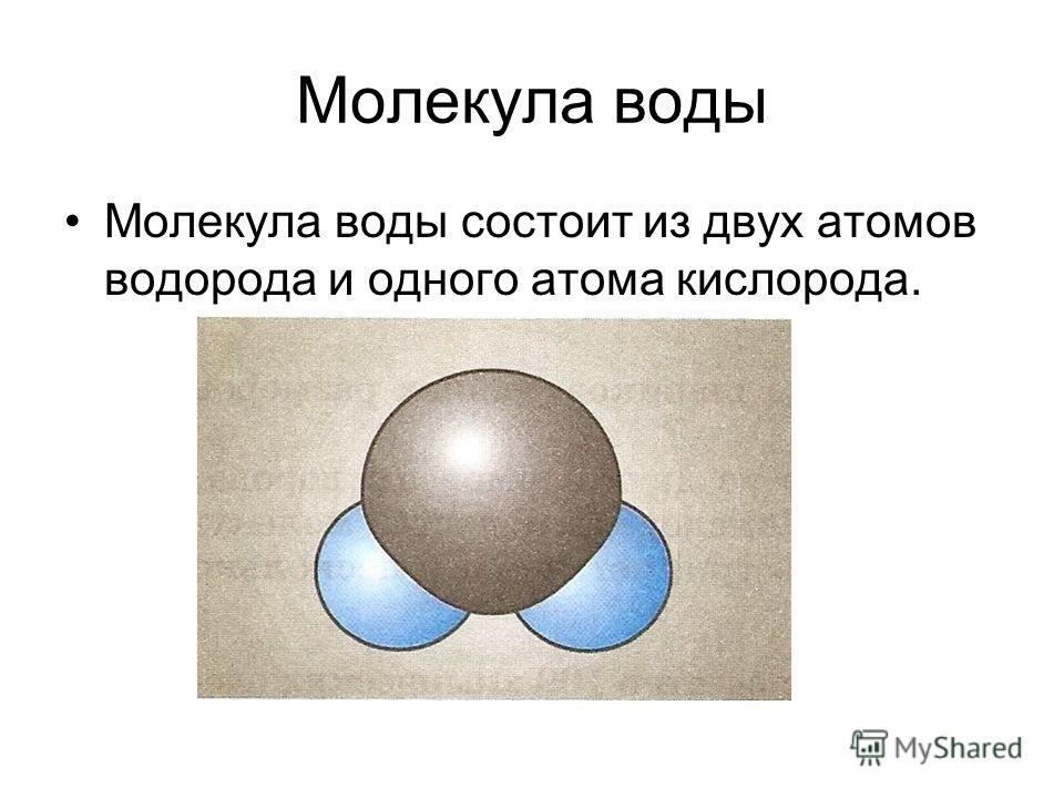 Молекула воды Молекула воды состоит из двух атомов водорода и одного атома кислорода.