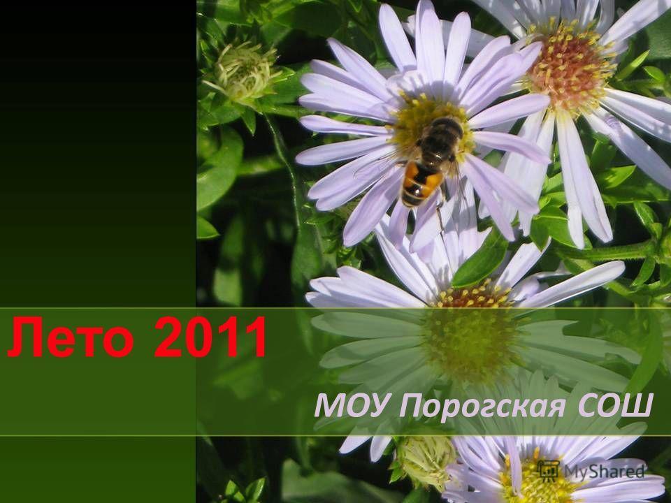 Лето 2011 МОУ Порогская СОШ
