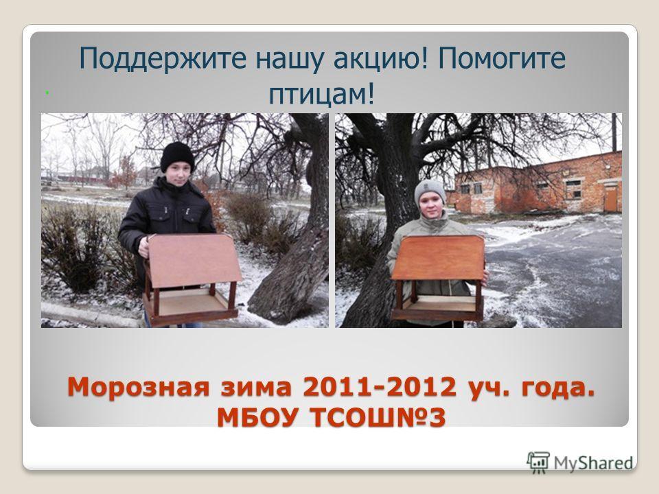 Морозная зима 2011-2012 уч. года. МБОУ ТСОШ3. Поддержите нашу акцию! Помогите птицам!