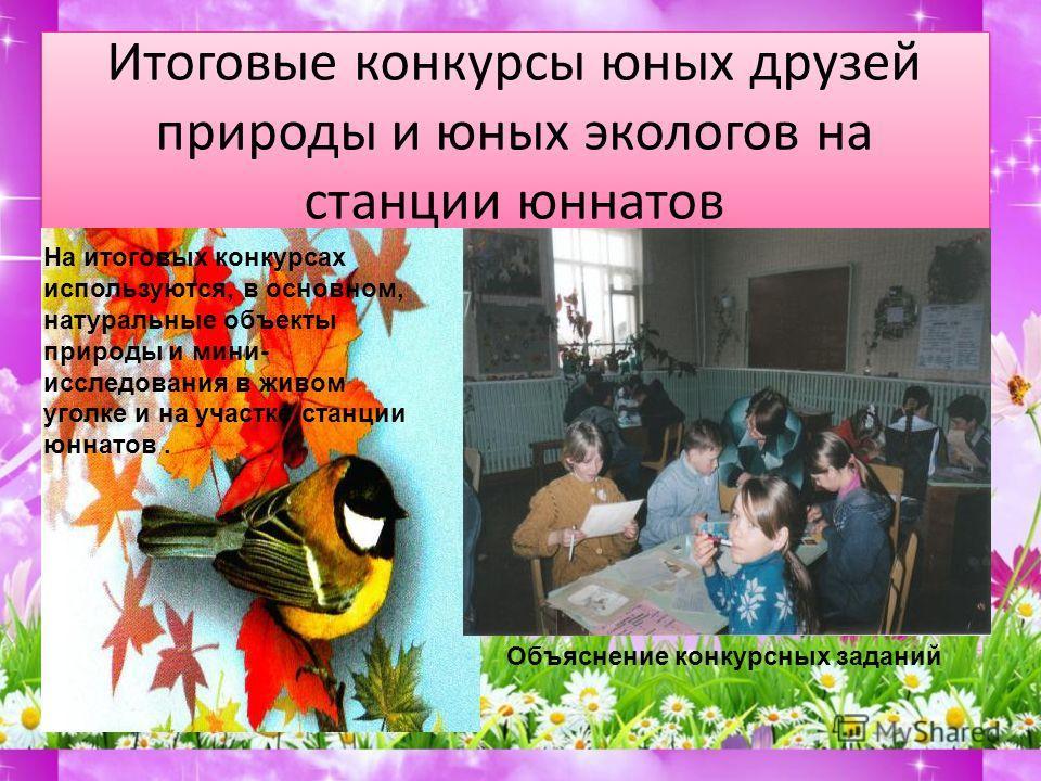 Победители итоговых конкурсов среди 4-х классов 2008 год На итоговых конкурсах экспонаты, в основном, натуральные Практическое задание- работа по определению на участке станции юннатов