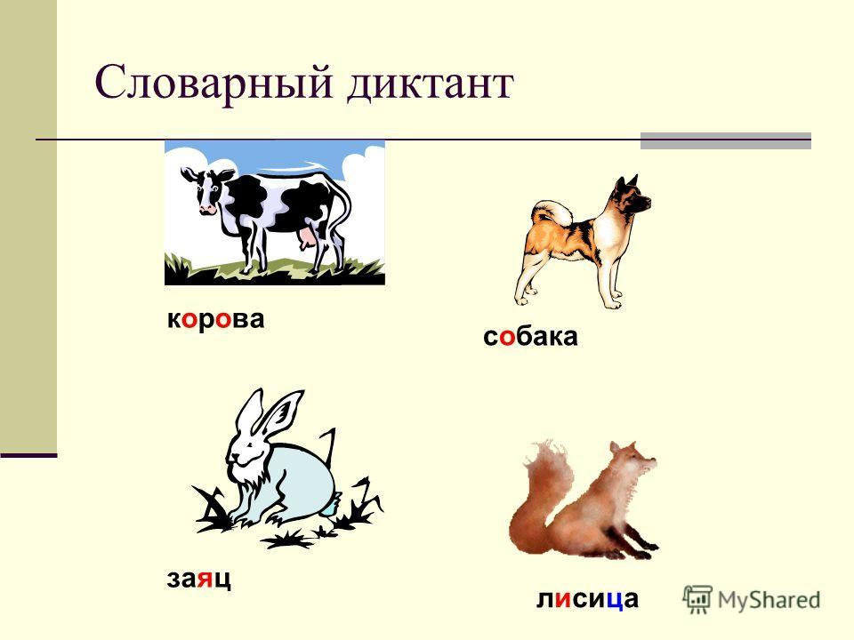 Словарный диктант корова собака заяц лисица