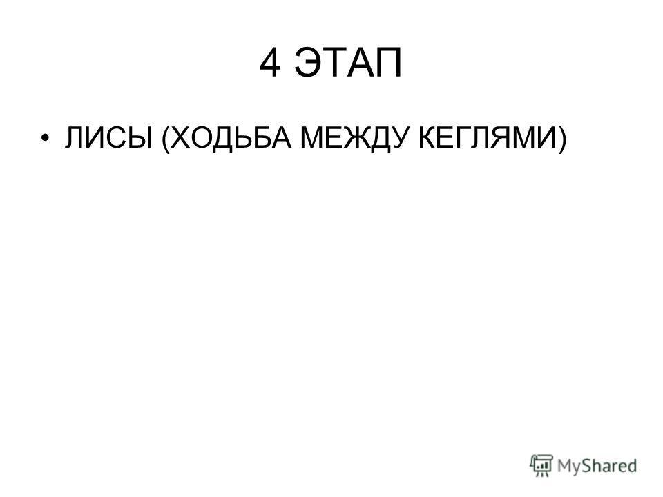 4 ЭТАП ЛИСЫ (ХОДЬБА МЕЖДУ КЕГЛЯМИ)