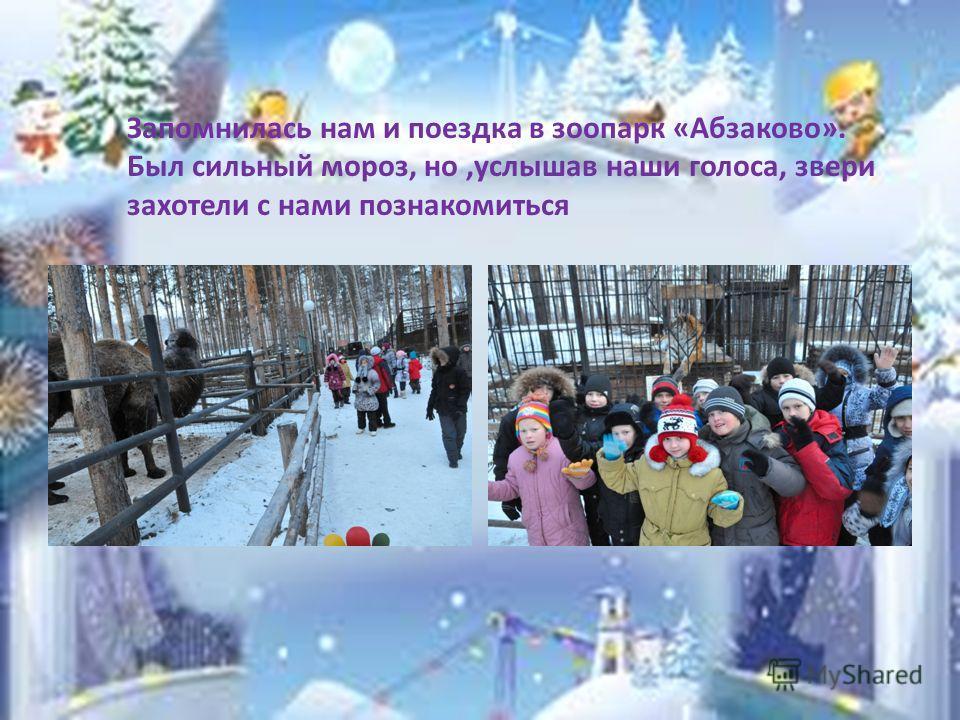 Запомнилась нам и поездка в зоопарк «Абзаково». Был сильный мороз, но,услышав наши голоса, звери захотели с нами познакомиться