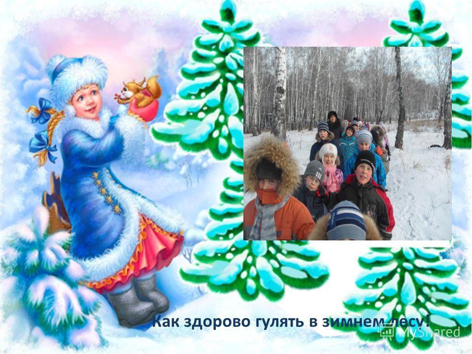 Как здорово гулять в зимнем лесу!