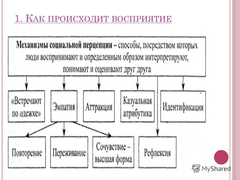 1. К АК ПРОИСХОДИТ ВОСПРИЯТИЕ