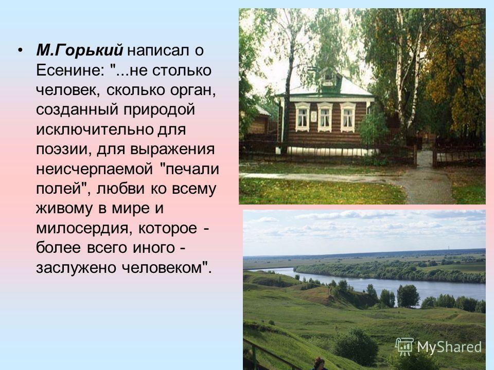 М.Горький написал о Есенине:
