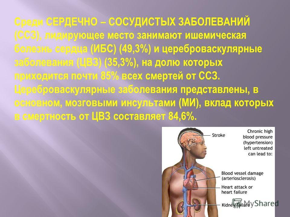 Среди СЕРДЕЧНО – СОСУДИСТЫХ ЗАБОЛЕВАНИЙ (ССЗ), лидирующее место занимают ишемическая болезнь сердца (ИБС) (49,3%) и цереброваскулярные заболевания (ЦВЗ) (35,3%), на долю которых приходится почти 85% всех смертей от ССЗ. Цереброваскулярные заболевания