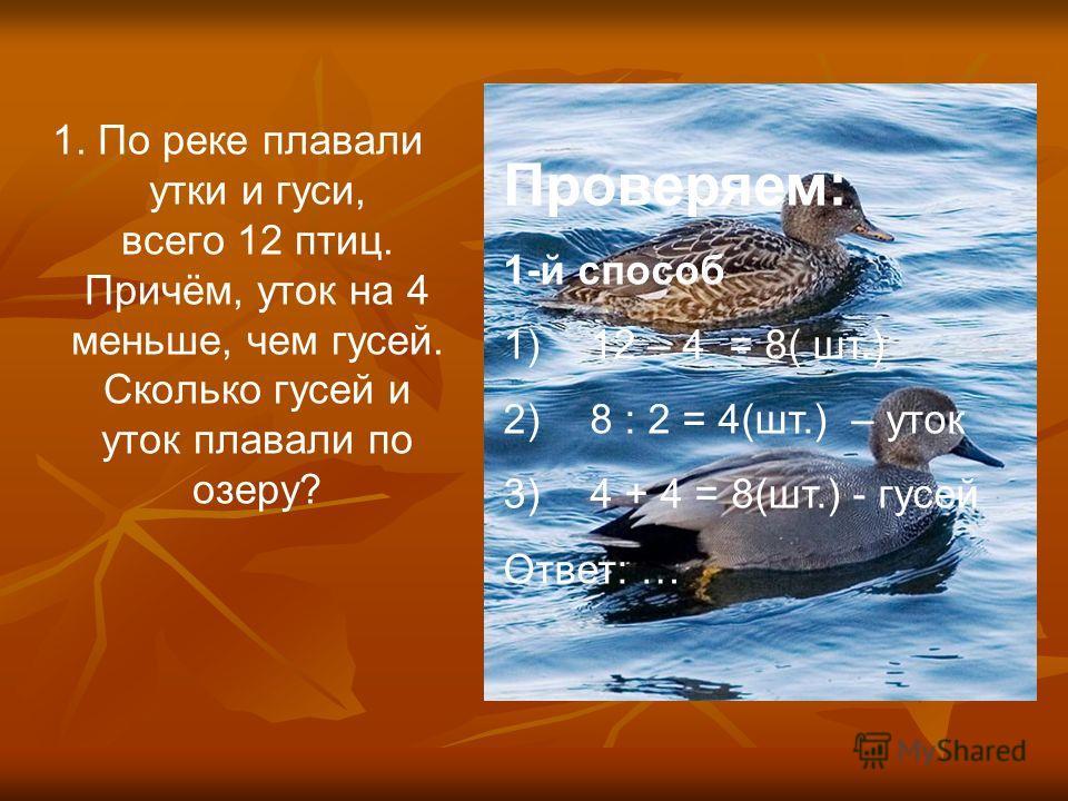 сравнительное утки и класс гдз 4 гуся описание