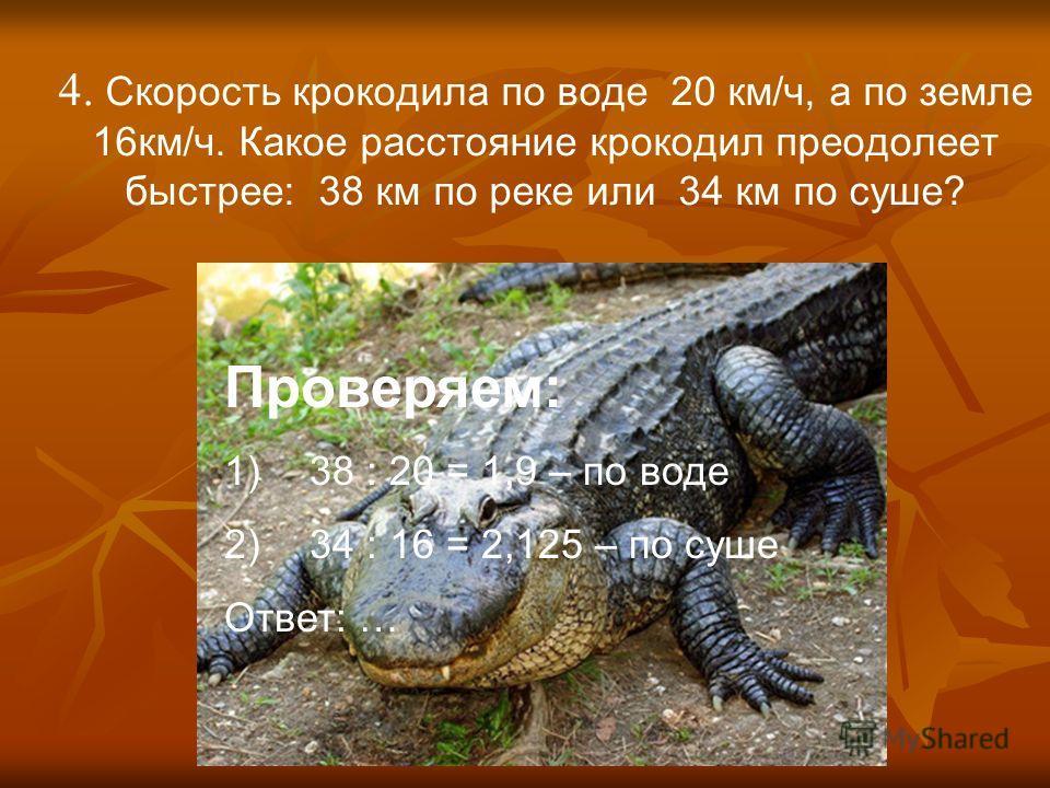 4. Скорость крокодила по воде 20 км/ч, а по земле 16км/ч. Какое расстояние крокодил преодолеет быстрее: 38 км по реке или 34 км по суше? Проверяем: 1)38 : 20 = 1,9 – по воде 2)34 : 16 = 2,125 – по суше Ответ: …