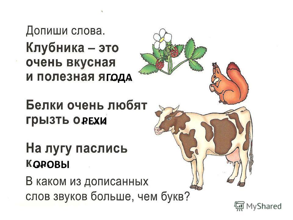 ГОДА РЕХИ ОРОВЫ
