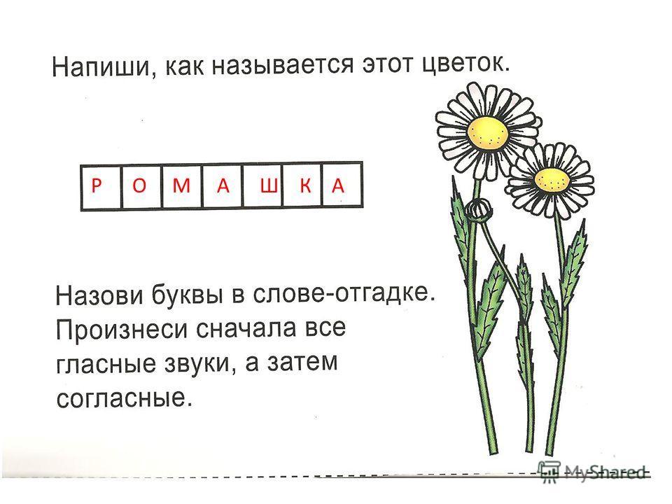 Р О М А Ш К А