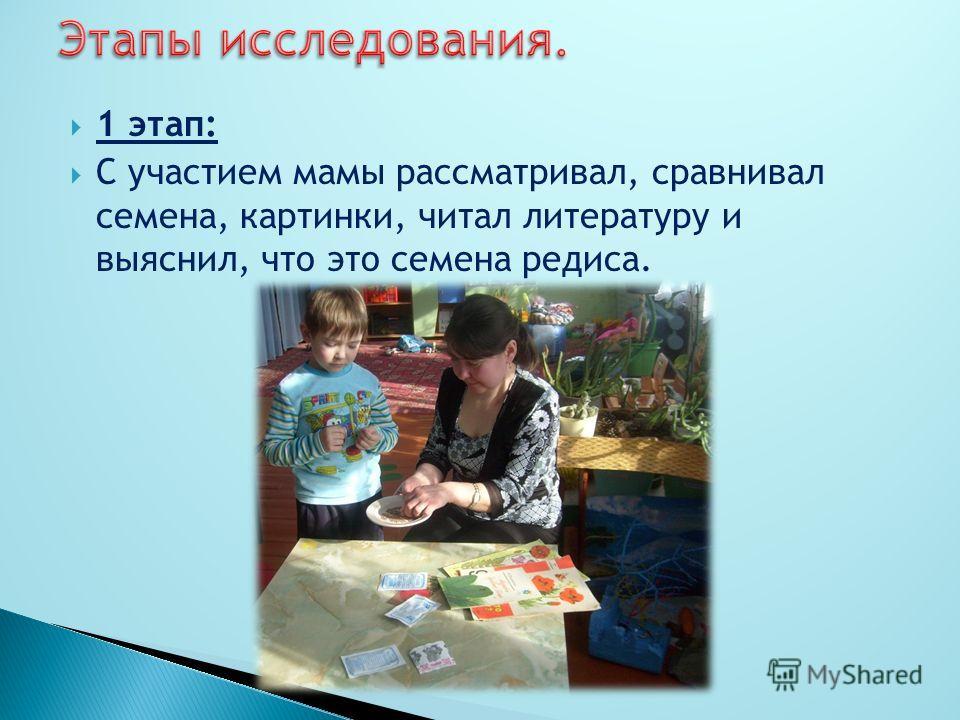 1 этап: С участием мамы рассматривал, сравнивал семена, картинки, читал литературу и выяснил, что это семена редиса.