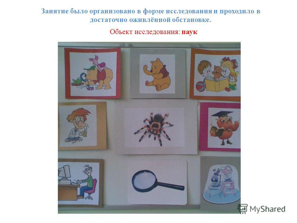 Занятие было организовано в форме исследования и проходило в достаточно оживлённой обстановке. Объект исследования: паук