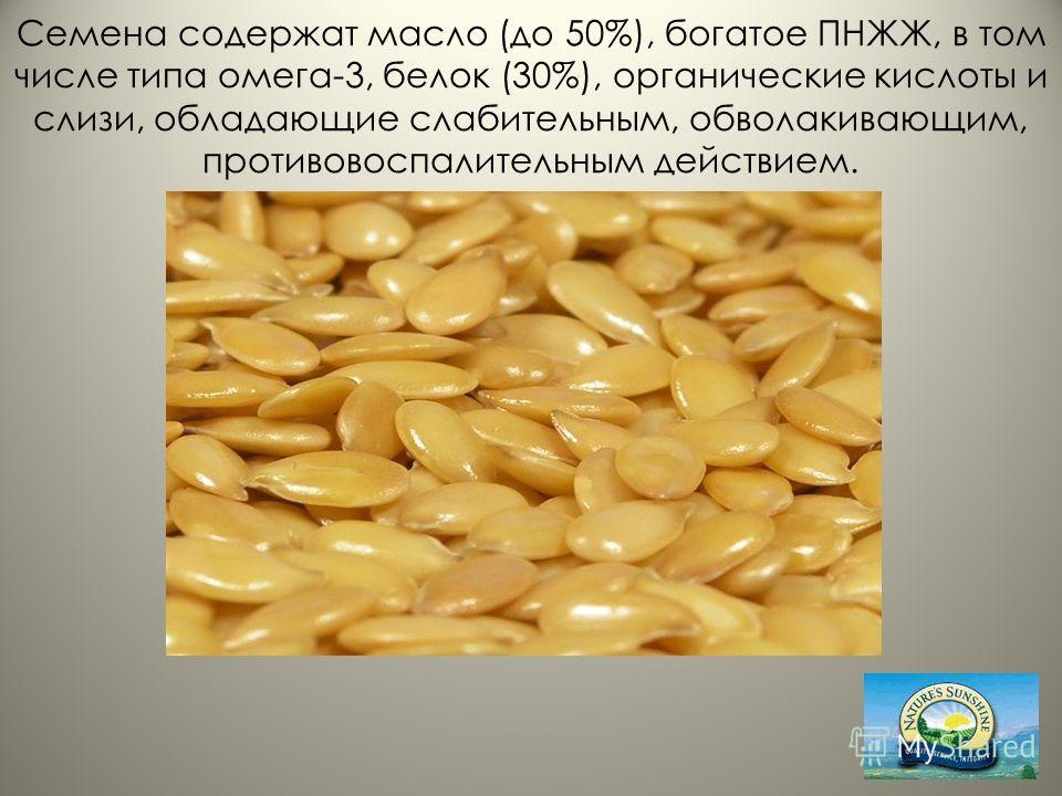 Семена содержат масло (до 50%), богатое ПНЖЖ, в том числе типа омега-3, белок (30%), органические кислоты и слизи, обладающие слабительным, обволакивающим, противовоспалительным действием.
