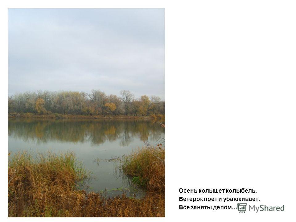 Осень колышет колыбель. Ветерок поёт и убаюкивает. Все заняты делом…