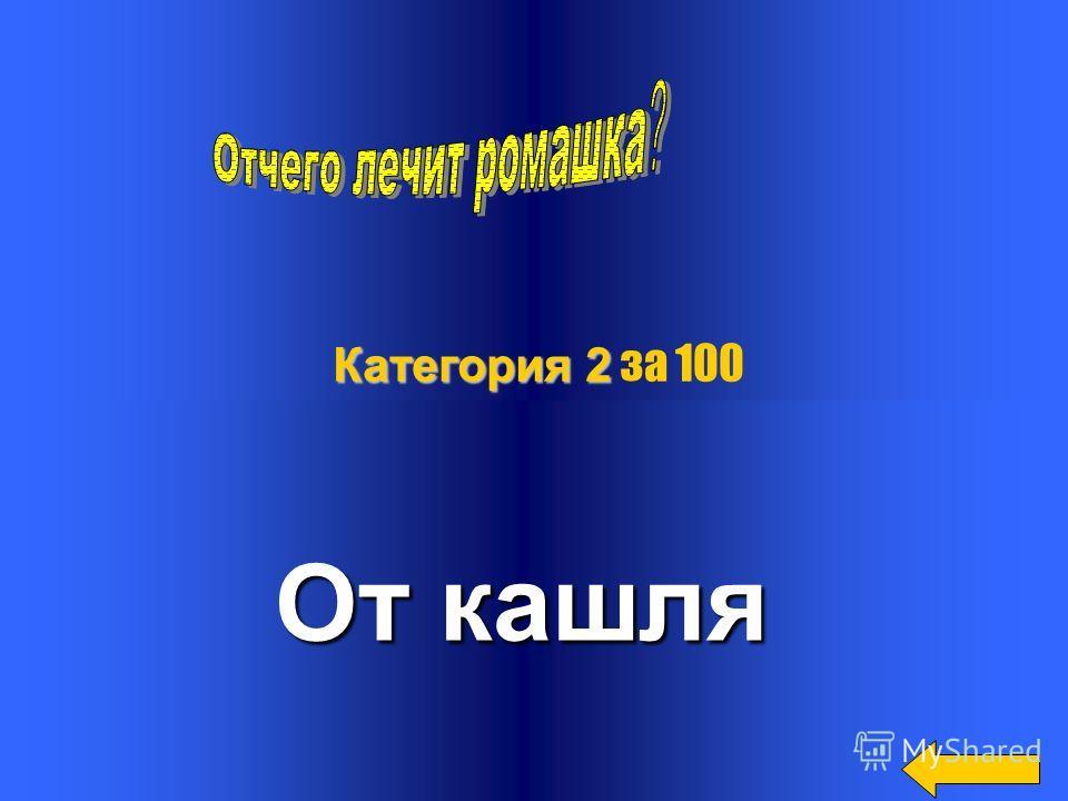 В каком году основан Алтайский край? 1937 год Категория 1 Категория 1 за 500