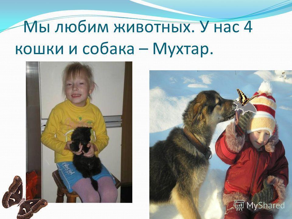 Мы любим животных. У нас 4 кошки и собака – Мухтар.