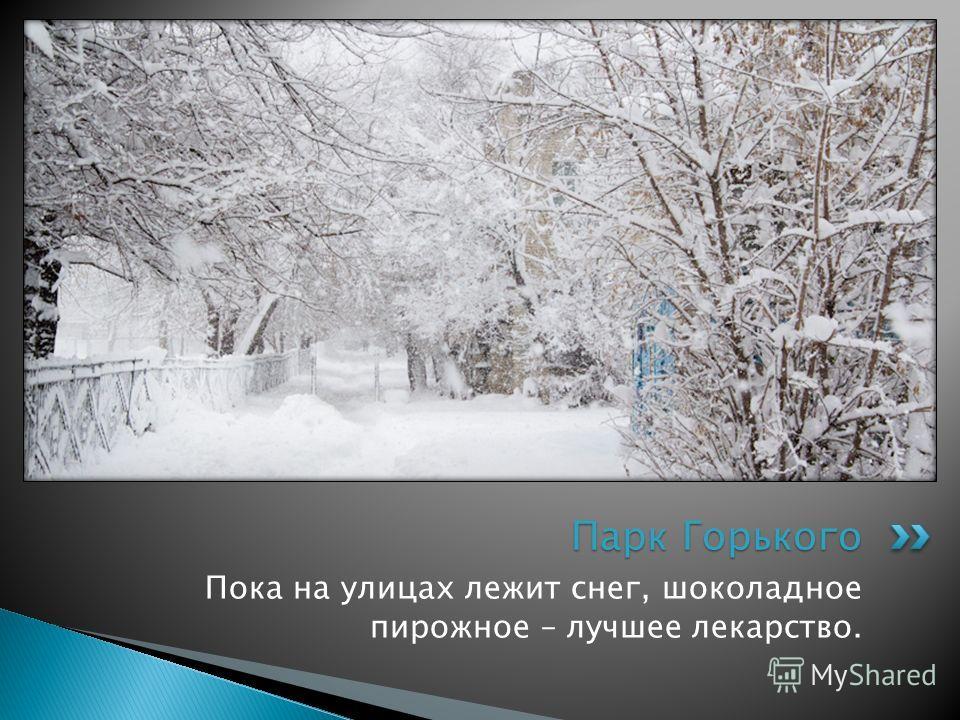 Пока на улицах лежит снег, шоколадное пирожное – лучшее лекарство. Парк Горького